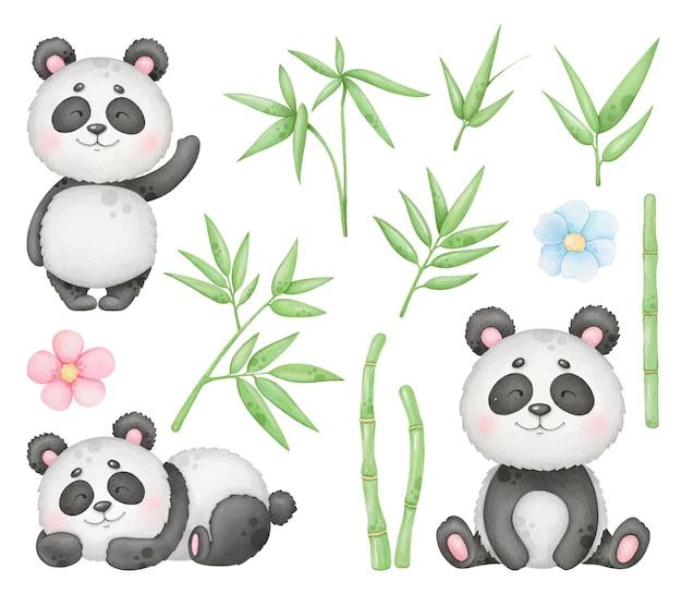 Симпатичные панда и бамбук картинки изолированные