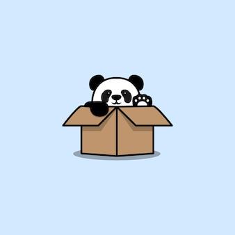 Cute panda in the box