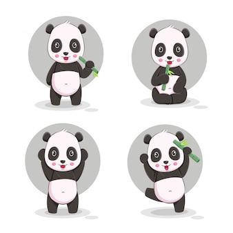 Cute panda cartoon  illustration
