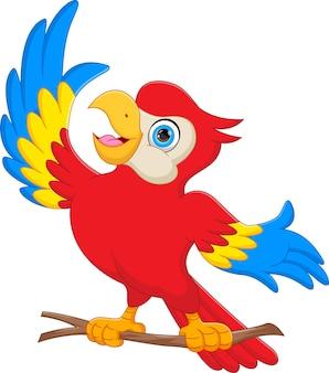 흰색 배경에 귀여운 앵무새 만화