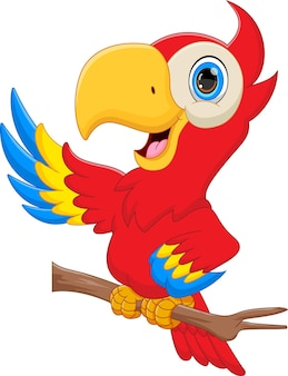 Cute parrot cartoon on white background