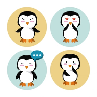 Cute penguin cartoon icons