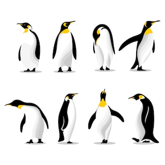 Cute penguins in different poses illustration set