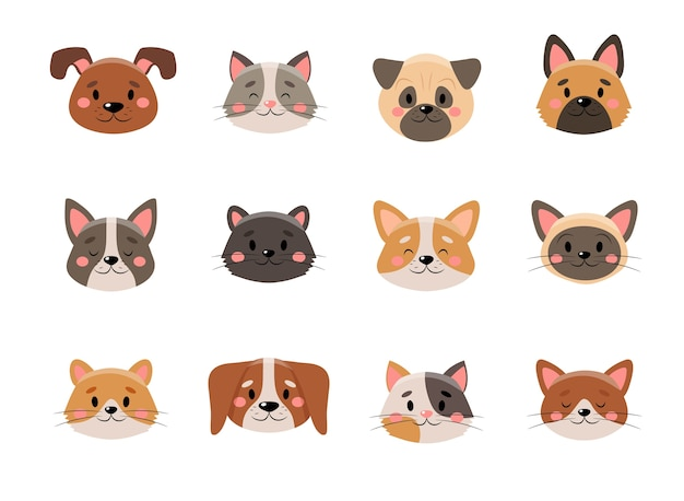 Cute pets face collection,  on white background
