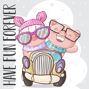 Cute pig animal on the car
