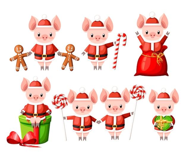 크리스마스 산타 의상 컬렉션에 귀여운 돼지. 만화 캐릭터 . 막대 사탕, 진저 쿠키 및 선물 상자가있는 작은 돼지. 흰색 배경에 그림