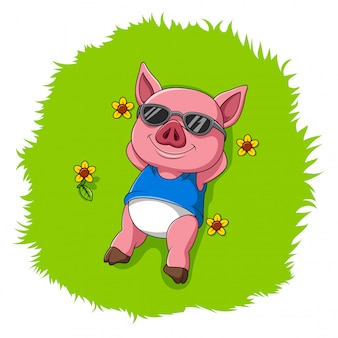 Cute pig rest on the grass