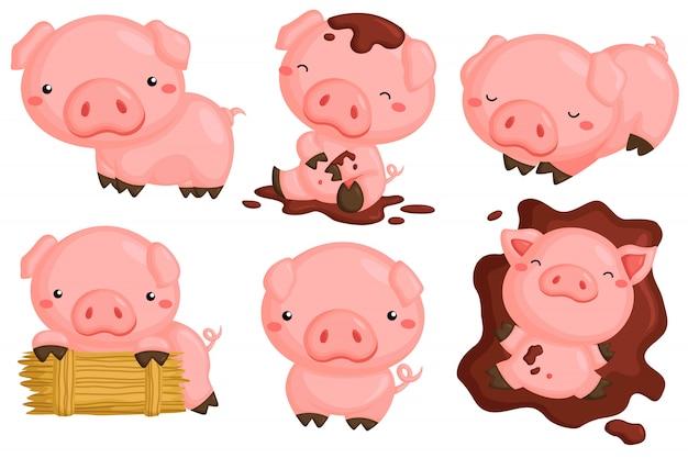 様々なアクションベクターセットでかわいい豚