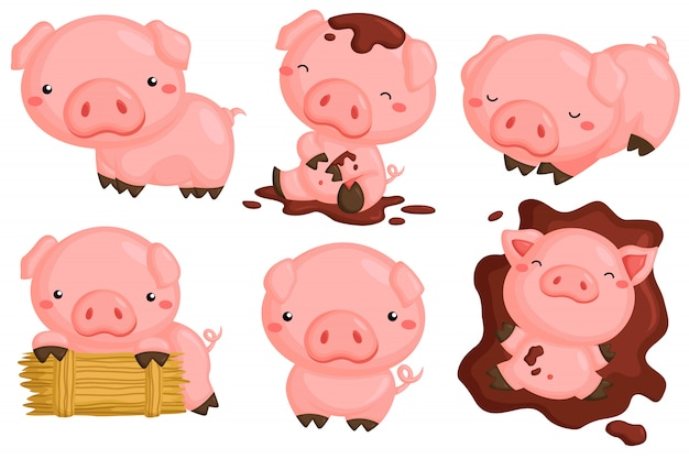 Cute pigs in various action vector set