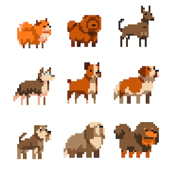 Cute pixel art dogs set illustration isolated