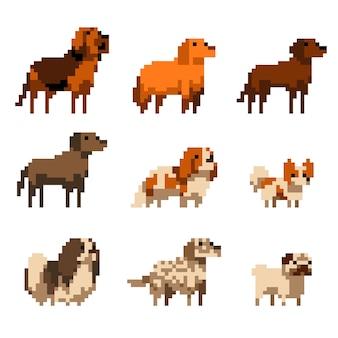 Симпатичные пиксель арт собаки набор изолированных иллюстрация