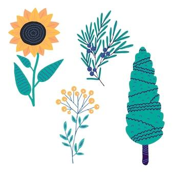 귀여운 식물 사이프러스 주니퍼 해바라기 탠시 흰색 배경에 고립