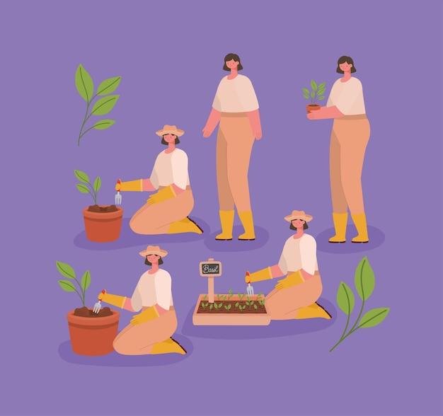 Набор иллюстраций милые плантаторы