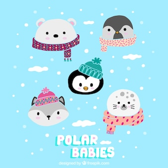Cute polar babies