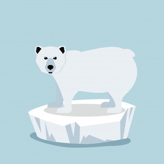 Cute Polar bear  on ice floe