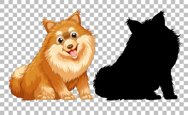 Cute pomeranian dog and its silhouette on transparent