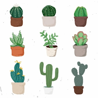 Cute potted plant element vector set succulent plants in hand drawn style