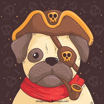 Cute pug with pirate costume
