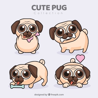Cute pugs with flat design