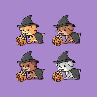 Милые щенки разного цвета в костюме ведьмы