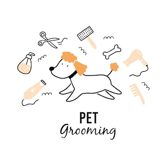 Cute puppy dog pet grooming.