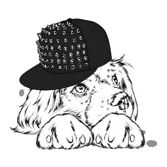 帽子をかぶったかわいい子犬