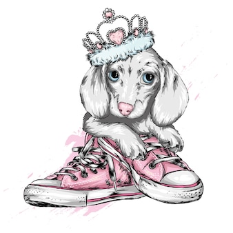 Милый щенок в короне и кедах.