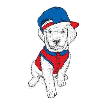 スタイリッシュな帽子のかわいい子犬