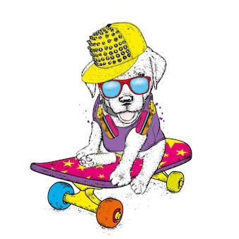 スタイリッシュな服とスケートボードのかわいい子犬