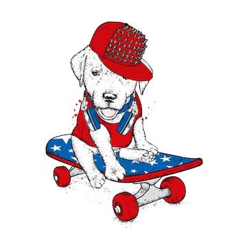 スケートボードのかわいい子犬
