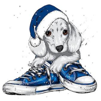サンタクロースの帽子をかぶったかわいい子犬。クリスマス。