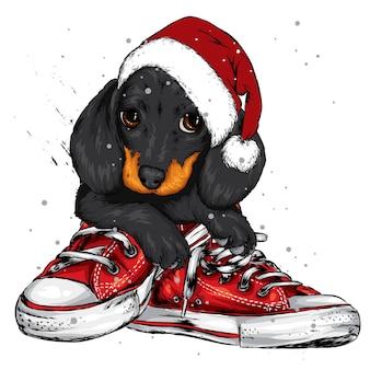 サンタクロースの帽子をかぶったかわいい子犬。元日とクリスマス。