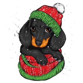 Cute puppy wearing a santa claus hat. new year's and christmas.