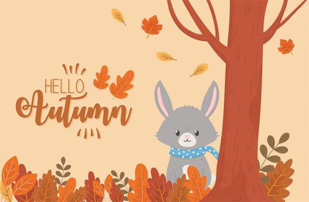 Cute rabbit in autumn season