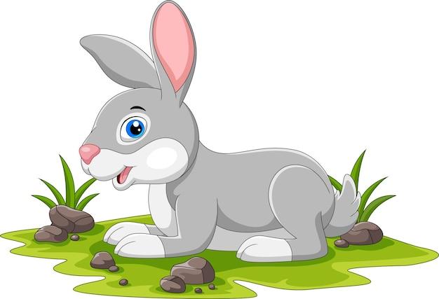かわいいウサギの漫画