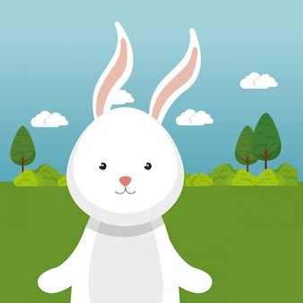 Cute rabbit in the field landscape character