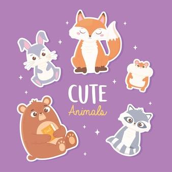 Cute rabbit fox bear hamster and raccoon cartoon animals stickers illustration