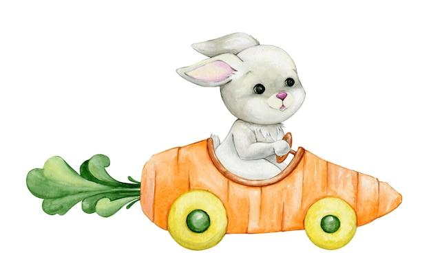 귀여운 토끼, 차를 타고. 만화 스타일의 고립 된 배경에 수채화 개념.