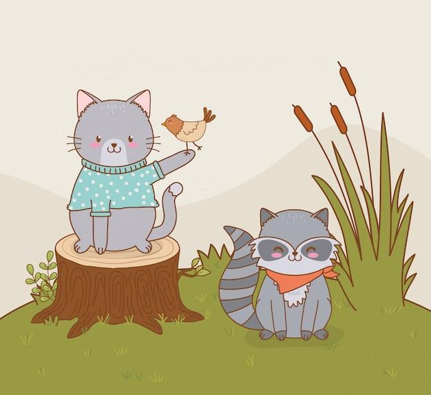 Милый енот и кот в поле лесных персонажей