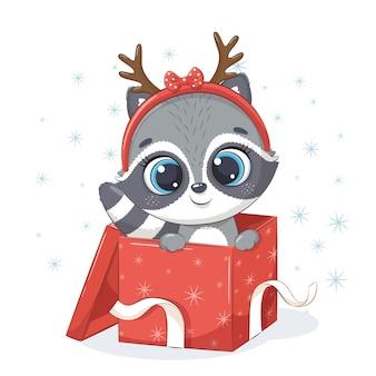 Cute raccoon in gift box.