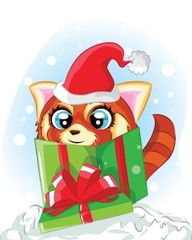 선물 상자에 귀여운 너구리입니다. 크리스마스 카드 받기