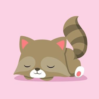 ピンクの固体の背景に寝て、彼の体を置くかわいいアライグマ