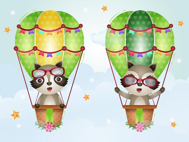 Милые еноты на воздушном шаре