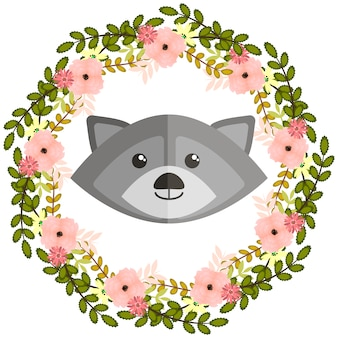 Cute racoon background