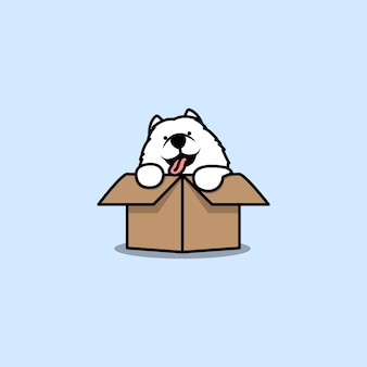 Cute samoyed puppy in the box cartoon icon