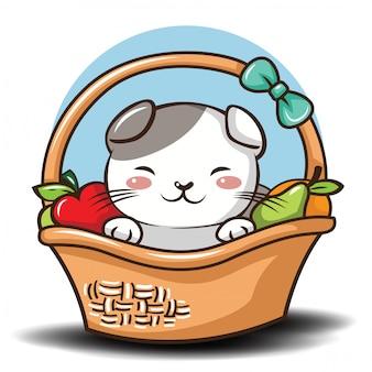 Cute scottish fold cat cartoon vector.