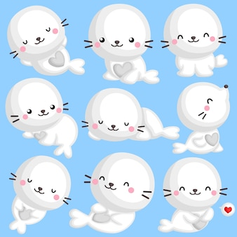 Cute seal set