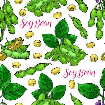 大豆のかわいいシームレスな背景。手描きイラスト