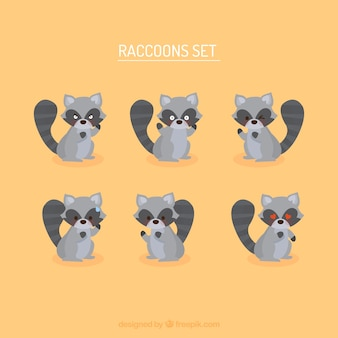Cute set of cartoon raccoons
