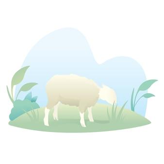 Cute sheep cartoon illustration to celebrate eid al adha